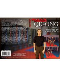 RMAX-Powered QiGong - Volume 1 DVD